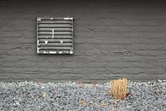#untitled 01 (Fr@nk ) Tags: minimalistic art canon 50mm frnk europe leica olympus nikon contax hasselblad topf25 topf100 minimalism krumpaaf mrtungsten62 interesting interestingness