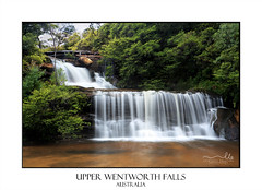 Tranquil waterfalls (sugarbellaleah) Tags: waterfall tranquility pretty foliage lush water flowing wentworthfalls cascade motion nature bluemountains australia green plants rocks zen peaceful relaxation wellness wellbeing