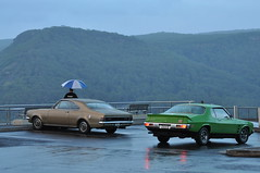 Damp dawn for HT and HJ GTS models (highplains68) Tags: aus australia nsw newsouthwales baldhill otford gm holden ht hj monaro gts