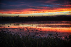 Some Kind of Magic DSC_6804 (BlueberryAsh) Tags: 2016 portland holiday lade susnet colour clouds sky lagoon fawthroplagoon cloudsstormssunsetssunrises water