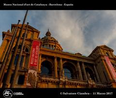913_D8B_2661_bis_Barcelona_2017