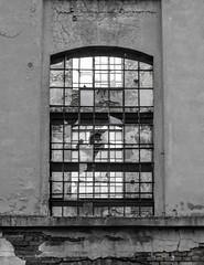 Okno (maciey24) Tags: okno ruina window glass szyba szkło hovel ruin rudera budynek building łódź miasto black white blackandwhite bw czarno białe czarnobiałe czerń biel czerńibiel monochromatic monochromatyczne monochromatyczny