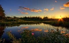 Wonderful  scenery (subhasdas2) Tags: joaquin keith carl mike ripe hoshiar rajubagdi fire kibsee rjt11