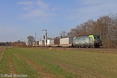 475 405 BLS in Brühl-Schwadorf am 12.03.2017 (Maik Bro) Tags: