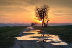 Behind the Sunset (Tom Zander) Tags: land landschaft landscape landschaften landscapes sunset surise sonnenschein sonnenuntergang sonnenaufgang dämmerung abendrot abendröte wasser pfütze pfützen water weg wege way ways pfad pfade path paths eyeem tomzander