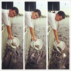 วันนี้ไปปล่อยปลา 500kg ณ น่านน้ำเจ้าพระยา เอาบุญมาฝากทุกท่านครับ #makemerit #poptrip #popphoto #popbike #Photographer #photo #thai #thailand #tour