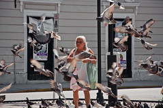 Mexican Woman Surrounded by Pigeons (terbeck) Tags: street woman bird mexico pigeon pigeons merida frau taube vogel mexiko tauben seniora strase terbeck