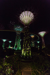 SuperTrees (randmphotos) Tags: singapore asia places