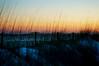 Dunes at sunset. (txdragonfly11) Tags: sunset beach gulfofmexico nature reeds sand florida dunes sony scenic shore panamacity waterscape challengeyouwinner slta55v
