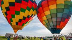 Hot Air Balloon Festival: A Colorful Time (Entropic Remnants) Tags: pictures photography photo image photos pics picture pic images photographs photograph remnants entropic