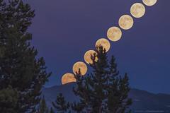 Super Moon Rising, 2013-07-22 (TheAstroShake) Tags: