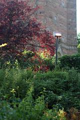 August in Bristol through my 85mm (thecharlotteem) Tags: uk summer england nature bristol cabottower brandonhill 2013