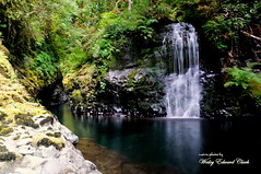 DSC_1195 (Photos by Wesley Edward Clark) Tags: oregon silverton waterfalls scottsmills abiquacreek abiquafalls