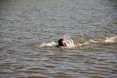 Reitdieptochten Garnwerd 2013 164 (AWJ Hefting) Tags: swimming reitdiep garnwerd zwemmen reitdieptochten