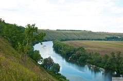 River Krasivay Mecha. 2013. (Sasha_mac) Tags: trees color nature water grass river mirror nikon 18105 weald    d90     natureandnothingelse