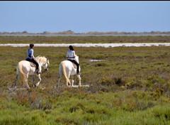 Balade en Camargue (au35) Tags: cheval nikon arles sud camargue balade d5000