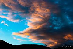 IMG_1214 (moutoons) Tags: fruit jaune automne rouge eau couleurs rivière pont porte nuage gorges tarn marron cascade arbre château champignon brume verte pomme croix feuille poire légume quézac lozère cévennes coing ispagnac