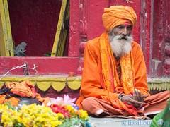 Sadhu ...Varanasi India (geolis06) Tags: india religious asia sage varanasi asie hindu sadhu inde offerings benares religieux uttarpradesh hindou offrande geolis06
