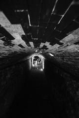 at o fim (**) Tags: people walking movement pessoas gente sopaulo bricks ghost tunnel move persone movimento passing persons tunel personnes fantme mouvement fantasmas briques tijolos mattoni passando fantasmi casadascaldeiras fantmes passent fotocultura