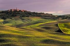 TuscanyCity_111013 (alvin.kroon) Tags: italy landscapes olive hills vineyards tuscany cyrpus vienza