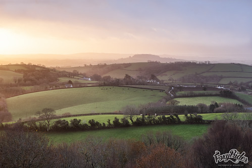 Bickington Daybreak #Flickr12Days