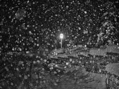 Stormy Night (Tewmom) Tags: winter snow storm pen snowflakes olympus panasonic 20mm epl5