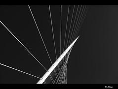 music in the sky II (Just me, Aline) Tags: bridge blackandwhite holland netherlands architecture zwartwit nederland calatrava brug architectuur hoofddorp blueribbonwinner silverefexpro