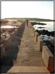 Puente sobre la mar. (margabel2010) Tags: espaa mar personas galicia puentes islas siluetas playas perritos piedras cambados solysombra