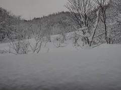 P1120404 (prelude2000) Tags: winter snow japan aomori hakkoda      sukayu