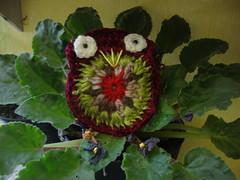 DSC05140 (Artesanato com amor by Lu Guimaraes) Tags: artesanato fuxico trico crochê {vision}:{plant}=0873 byluguimarães {vision}:{flower}=0629 {vision}:{outdoor}=0802