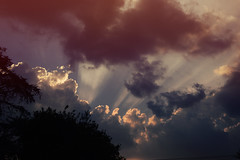 Illuminations (JuliaDono.) Tags: blue red sky cloud white plant black tree colors weather clouds dark landscape grey lights luces nice nikon shoot darkness illuminations paisaje pic colores nubes 1855mm climate lightblue oscuro clime d3200