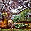 In Travis Heights #gardenstatuary (matzohball77) Tags: gardenstatuary uploaded:by=flickstagram instagram:venuename=austin2ctx instagram:venue=201270594 instagram:photo=6485411995889078282463317