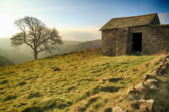 Barn on Wind Hill (OutdoorMonkey) Tags: windhill exmoor somerset countisbury lynmouth hill hillside field tree barn countryside outside outdoor