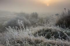 BMX Track View (Julian Barker) Tags: bmx track hemington lockington sawley nottingham leicestershire frost rime cold freezing sun orb sunrise dawn winter wintry sub zero opportunity julian barker canon 600 dslr 2016