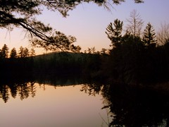 Long Pond At Dusk. (dccradio) Tags: trees ny newyork reflection tree nature natural scenic adirondacks upstateny duane longpond northernny lakeduane