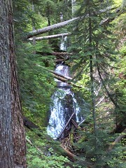 Logan on the log (Mr_Wes) Tags: oregon waterfall crazy high log son cascades dontfall