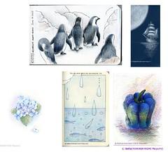 2013_06_15_s (blue_belta) Tags: sea flower art penguin sketch drawing hydrangea 花 海 paprika 水族館 coloredpencil アート 船 ペンギン 色鉛筆 紫陽花 雨 ピーマン スケッチ