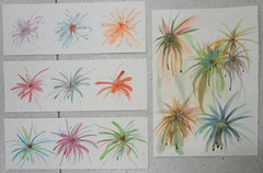 Abstract studies, by Sheila (Dona Mincia) Tags: abstract art watercolor painting paper arte study splash abstrato pintura aquarela
