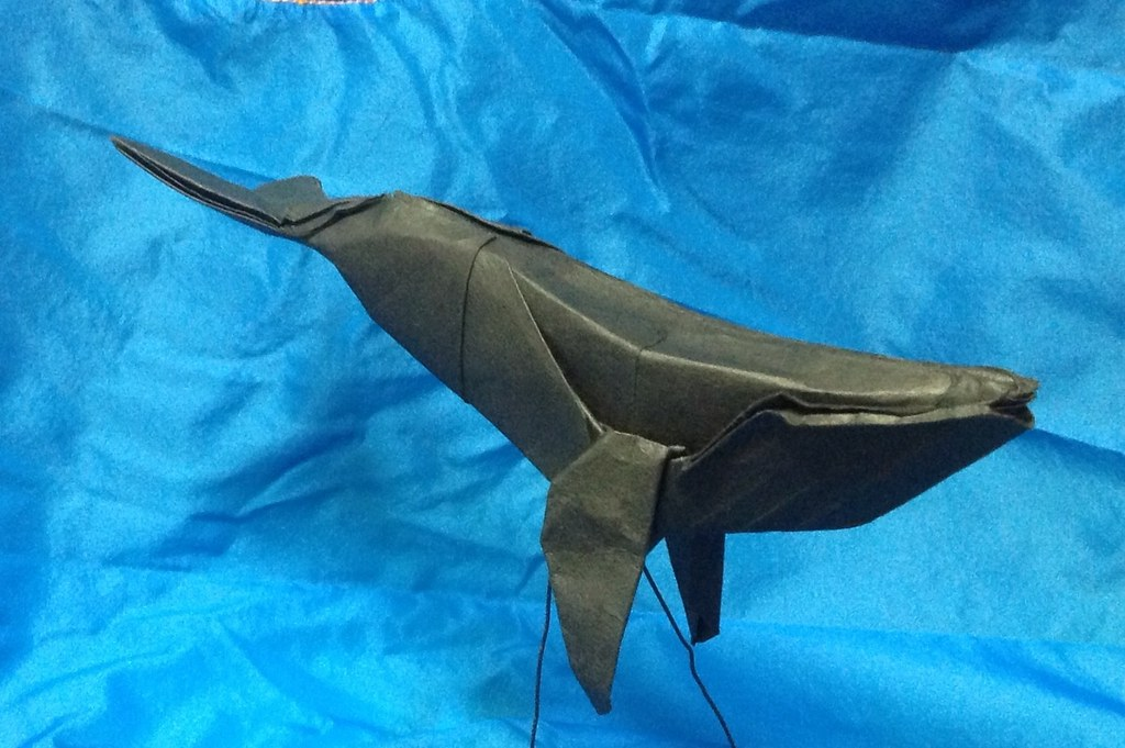 Humpback Whale Paper Folding Artist Redpaper Tags