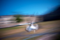 Edinburgh Sketchbook (Sibokk) Tags: uk bird photography scotland edinburgh pigeon panasonic nd filters density neutral gf1 nd8 nd4