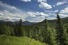 Denali Park, AK   17 (Largeguy1) Tags: mountains canon landscape mark iii ak bluesky 5d approved denalipark