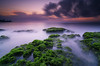 Green Moss of Manyar (eggysayoga) Tags: longexposure sky bali cloud sun seascape seaweed tree beach water night sunrise indonesia landscape dead moss nikon cloudy ss tokina filter le shore 09 lee nd stacking f28 pantai graduated lightroom atx waterscape uwa slowspeed ultrawideangle gnd neutraldensity 1116mm ketewel manyar imageaveraging d7000