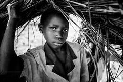 Lendu Girl from Ituri - DR CONGO - (C.Stramba-Badiali) Tags: poverty africa portrait blackandwhite look rural war village photojournalism blackpeople congo dailylife drc reportage msf rdc drcongo congolese lookingatcamera centralafrica conflictzone congokinshasa ituri remotevillage internallydisplaced afriquecentrale lendu irumu monusco northeasterncongo ituridistrict lendupeople ituriconflict