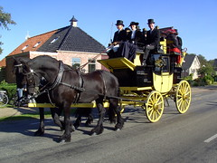 Horses and Carriage (Davydutchy) Tags: life 1920s ladies feest horse holland netherlands festival lady cheval 1930s village carriage country kutsche nederland september riding agriculture pferd friesland agricultural horseriding paard countryfair friesian platteland paardrijden koets frisian fryslân hynder nieuwehorne 2013 dorpsleven nijhoarne oudehorne flaeijel aldhoarne hynsteride