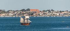 Tall Ships #2 (Judi Mowlem Photography) Tags: sailing antique ships sails australia melbourne victoria williamstown enterprise fleet tallships rigging vessels hobsonsbay
