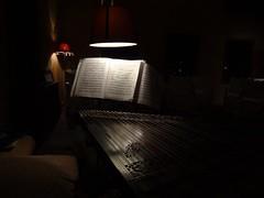 Julien Weiss - Qanun 20 (Aquasabiha) Tags: light shadow music instrument kanun imaret qanun julienweiss