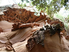Penyes D'Egipte (Miguel__Escobar) Tags: geology menorca minorca geomorphology tafoni balearicislands islasbaleares geologa physicalgeography geomorfologa taffoni areniscas geografafsica