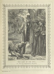 """British Library digitised image from page 77 of """"Stories of Irish Life ... With illustrations, etc"""""""