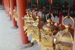 Kasuga-taisha, Kasuga Grand Shrine (satoson) Tags: japan unescoworldheritagesite  nara  kasugagrandshrine     historicmonumentsofancientnara nationaltreasuresofjapan canon5dmarkii