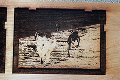 Blue Block (jjldickinson) Tags: ocean wood dog beach water print cherry concrete jamie parkinggarage sophie carving card foam printmaking olympusom1 woodblock palosverdes palosverdespeninsula colorseparation ranchopalosverdes fujicolorpro400 mokuhanga laserengraving promastermcautozoommacro2870mmf2842 promasterspectrum772mmuv kilroyairportcenter card2013 roll481o2